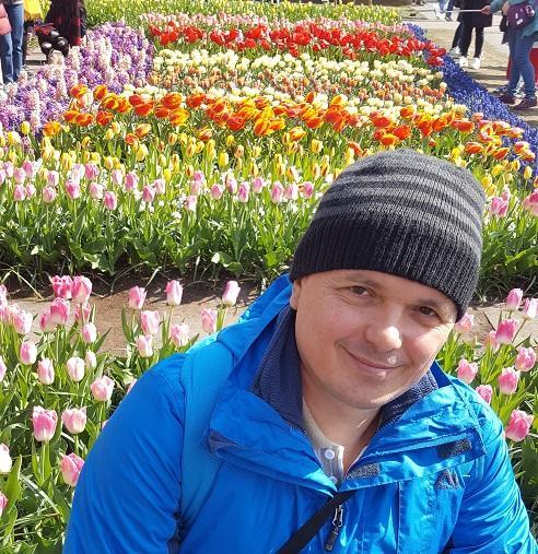 Посадка тюльпанов осенью. Когда и как садить.